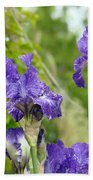 Fine Art Floral Prints Purple Iris Flowers Canvas Irises Baslee Troutman Bath Towel