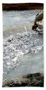 Fine Feathered Fisherman Bath Towel