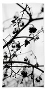 Fineart-nature-4 Hand Towel