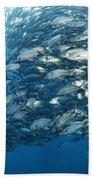 Fish Watch Bath Towel