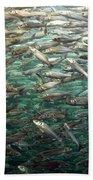 Fishes Bath Towel