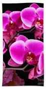Five Orchids  Bath Towel