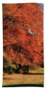 Flame Trees Bath Towel