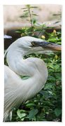 Flamingo Gardens - Great Egret Profile Bath Towel