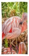 Flamingo2 Bath Towel