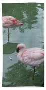 Flamingoes Posing Bath Towel