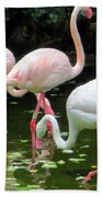 Flamingos 8 Bath Towel