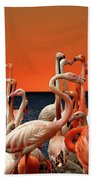 Flamingos At The Cape Hand Towel