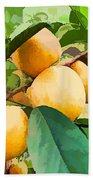 Fleshy Yellow Plums On The Branch Bath Towel