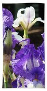 Flora Bota Irises Purple White Iris Flowers 29 Iris Art Prints Baslee Troutman Bath Towel