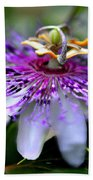 Flora Passiflora Hand Towel