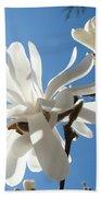 Floral Art Print Landscape Magnolia Tree Flowers White Baslee Troutman Bath Towel