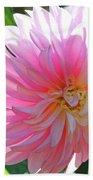 Floral Art Prints Pink Dahlias Sunlit Baslee Troutman Bath Towel
