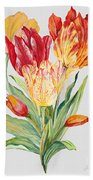 Floral Botanicals-jp3789 Bath Towel