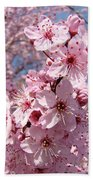 Floral Spring Art Pink Blossoms Canvas Baslee Troutman Bath Towel