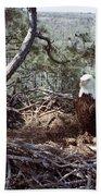 Florida: Bald Eagles, 1983 Bath Towel