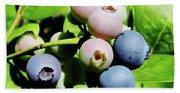 Florida - Blueberries - On The Bush Bath Towel
