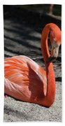 Florida Flamingo Hand Towel
