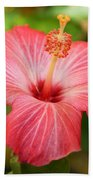 Florida Hibiscus Bath Towel