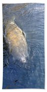 Florida Manatee Bath Towel