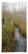 Florida Trail Big Cypress Bath Towel