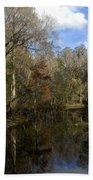 Florida Wetlands Hand Towel
