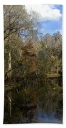 Florida Wetlands Bath Towel