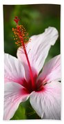 Flower Beauty2 Bath Sheet by Riad Belhimer