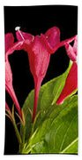 Flower Composite Trio Horizontal Bath Towel
