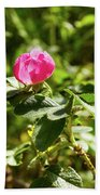 Flower Of Eglantine - 2 Bath Towel