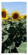 Flower Sunflower,yellow Flower, Bath Towel