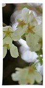 Flowering Cherry Tree 17 Bath Towel