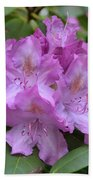 Flowering Pink Rhododendron Blossoms On A Bush Bath Towel