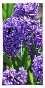 Flowering Purple Hyacinthus Flower Bulb Blooming Bath Towel