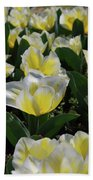 Flowering Yellow And White Tulips In A Spring Garden  Bath Towel