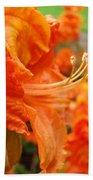 Flowers Azalea Garden Orange Azalea Flowers 1 Giclee Prints Baslee Troutman Bath Towel
