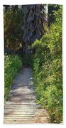 Footpath In Peters Canyon I Bath Towel