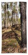 Forest Next Summer After A Fire Bath Towel