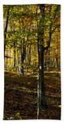 Forest Floor Two Bath Towel