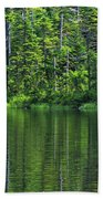 Forest Lake Hand Towel