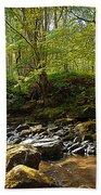 Forest Landscape Hand Towel