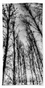 Forest Pastel  Bath Towel