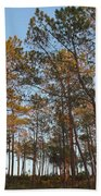 Forest Pine Trees At Sunset Bath Towel