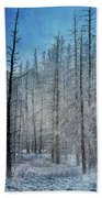 Forest Secrets  7917 Bath Towel