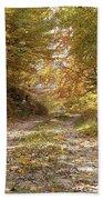 Forest Stone Path Bath Towel