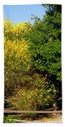 Forsythia Bath Towel