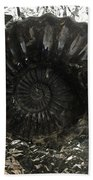 Fossil 91,000,000 Years Hand Towel