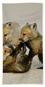Fox Cubs At Play II Bath Towel