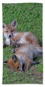 Fox Cubs Chilling Out Bath Towel