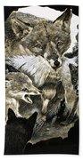 Fox Delivering Food To Its Cubs  Bath Towel